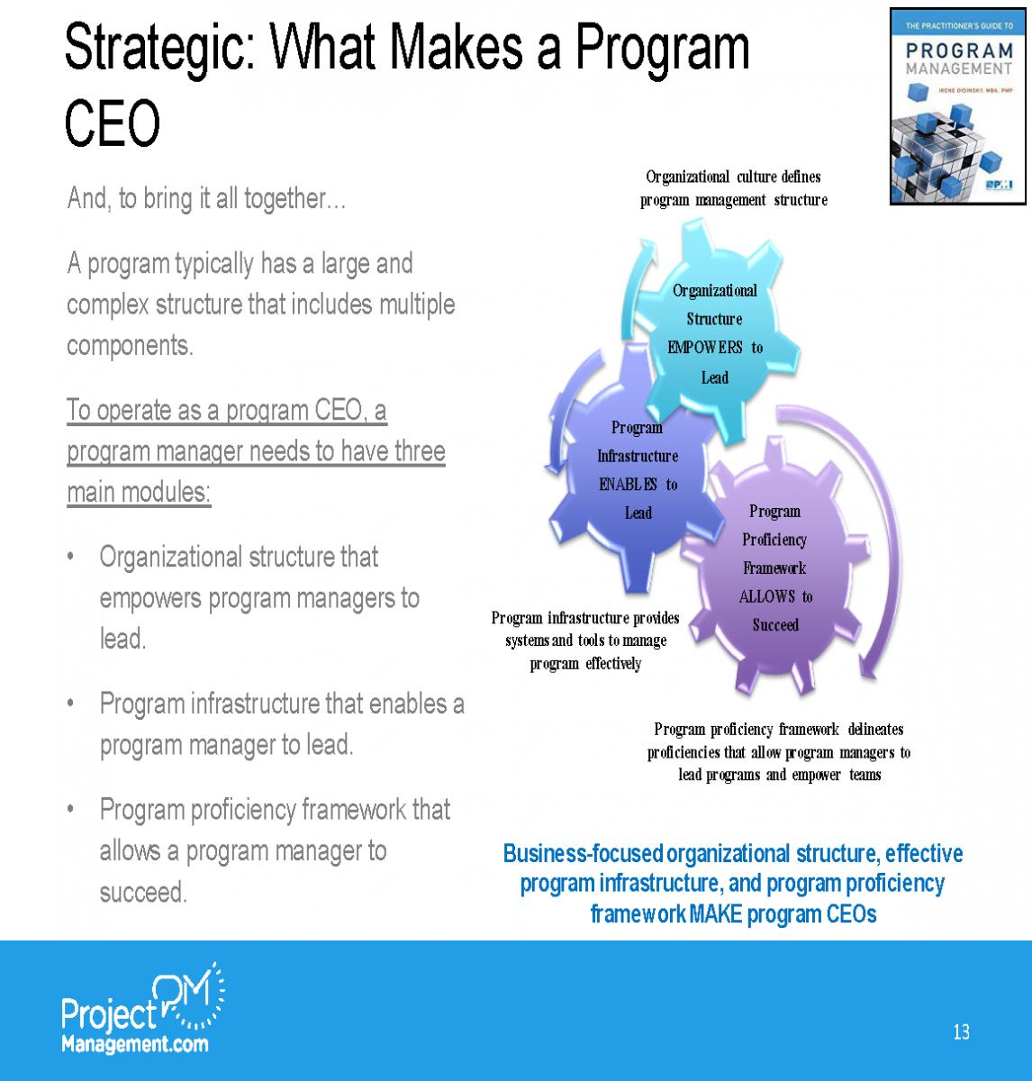 ProjectManagementcom webinar_Irene Didinsky_05112018_FinalFinal_Page_17