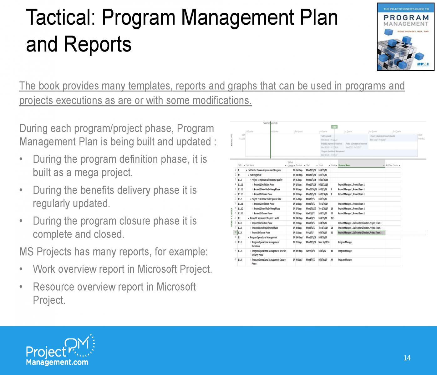 ProjectManagementcom webinar_Irene Didinsky_05112018_FinalFinal_Page_18